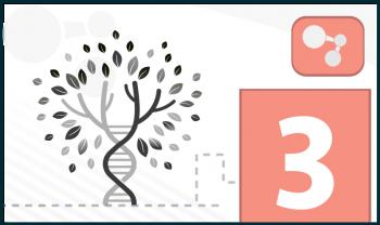 Herencia: la transmisión de rasgos y la reproducción