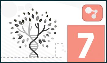 Niveles de organización celular y los sistemas del cuerpo